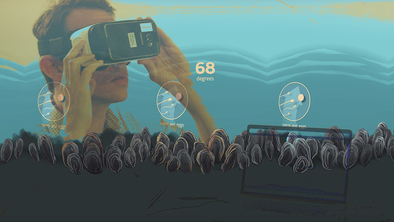 The World of VR as Their Oyster