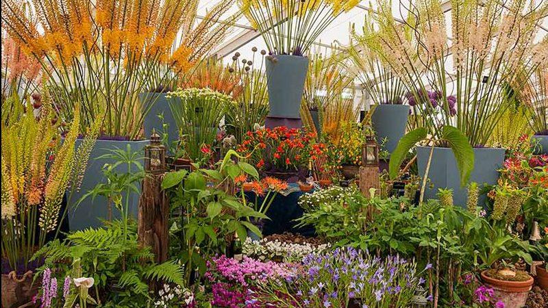 RHS Garden Show B0B