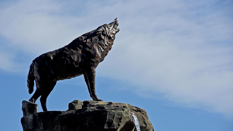 wolf-statue-1500