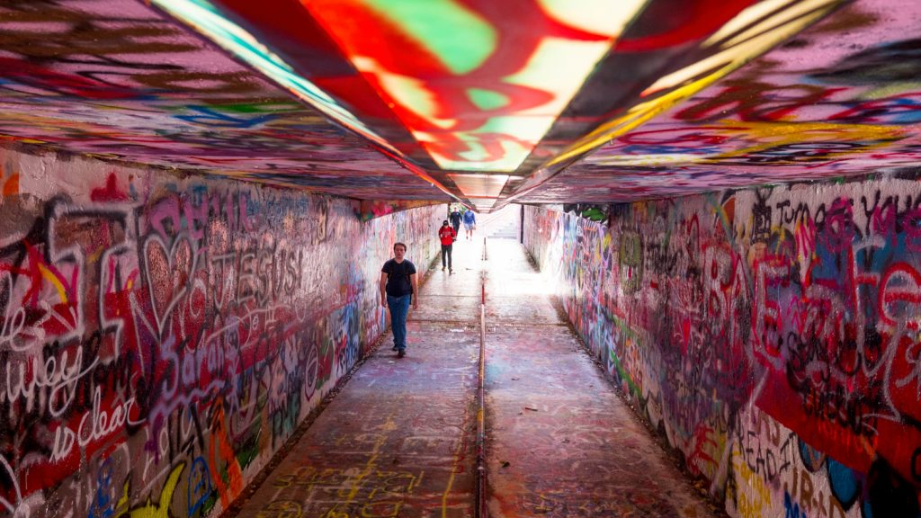 free expression tunnel