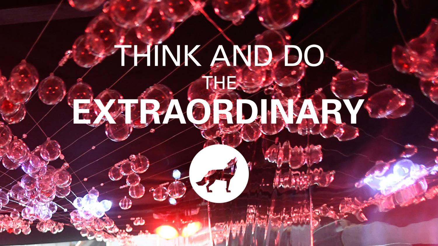 Think and Do the Extraordinary